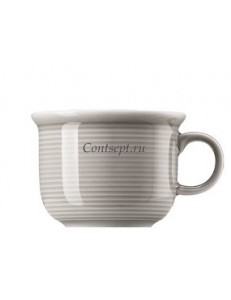 Чашка для эспрессо 100мл фарфор Thomas серия Trend Colour Moon Grey