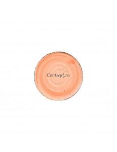 Тарелка мелкая 22,5см фарфор PL Proff Cuisine серия ORGANICA SPICY