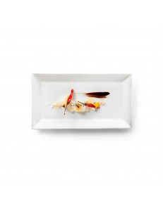 Тарелка прямоугольная 28х16 см фарфор PORDAMSA серия Square